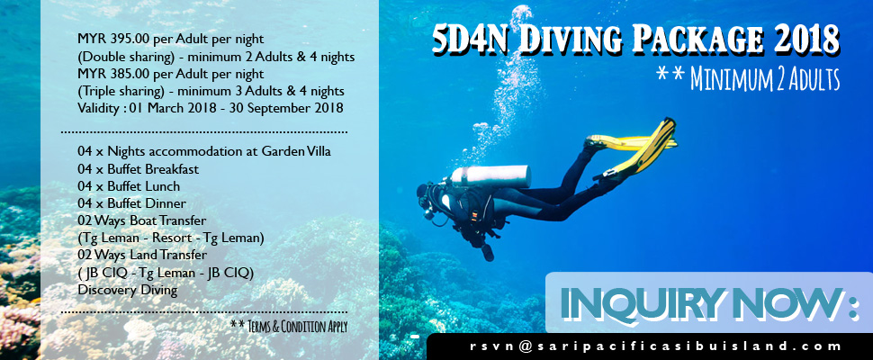DIVING PACKAGE